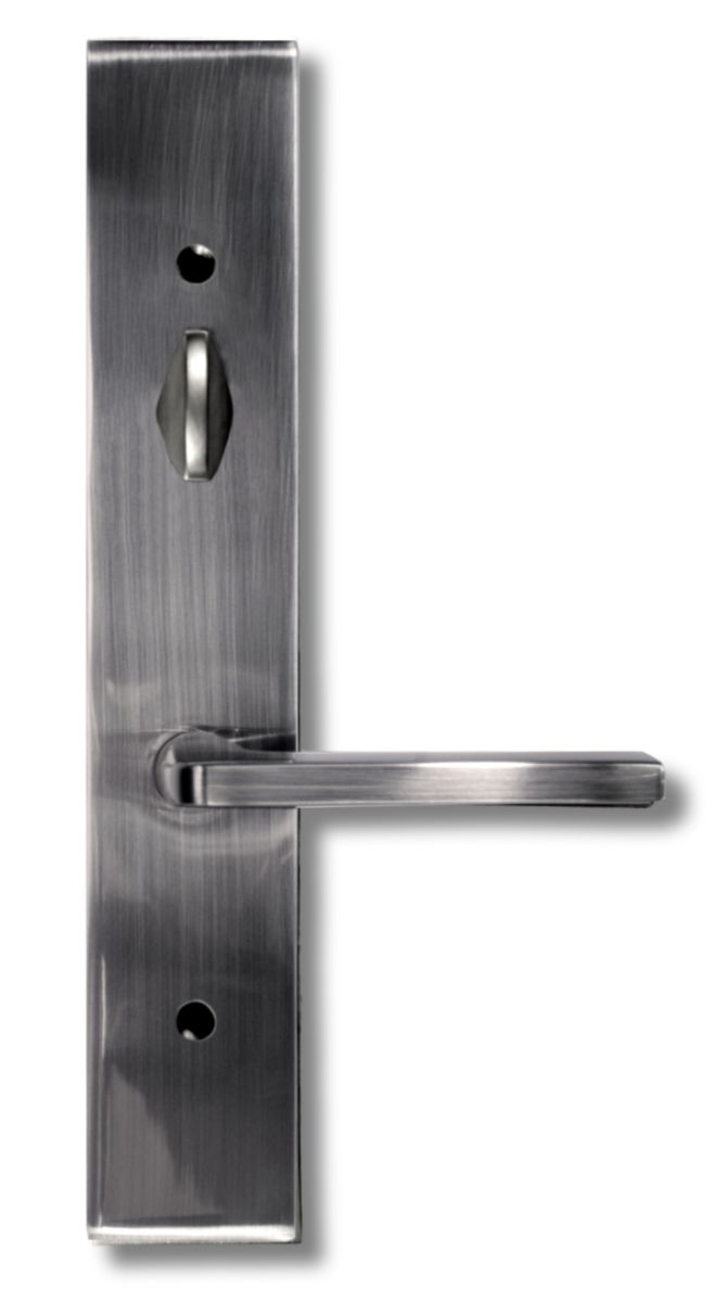 Door_swing_Roma_pewter