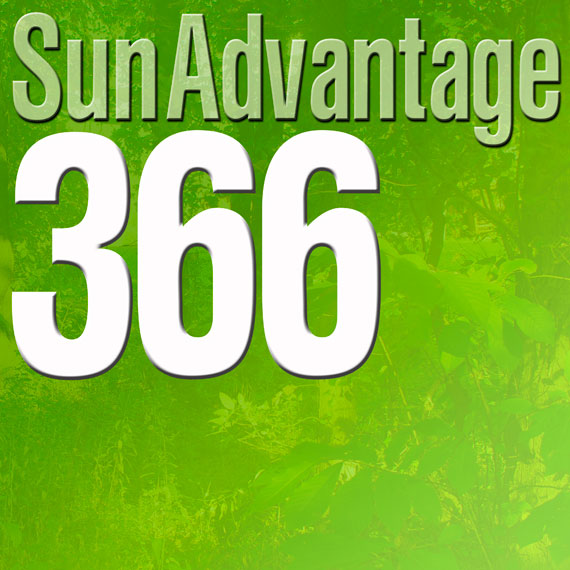 Sun Advantage 366 logo